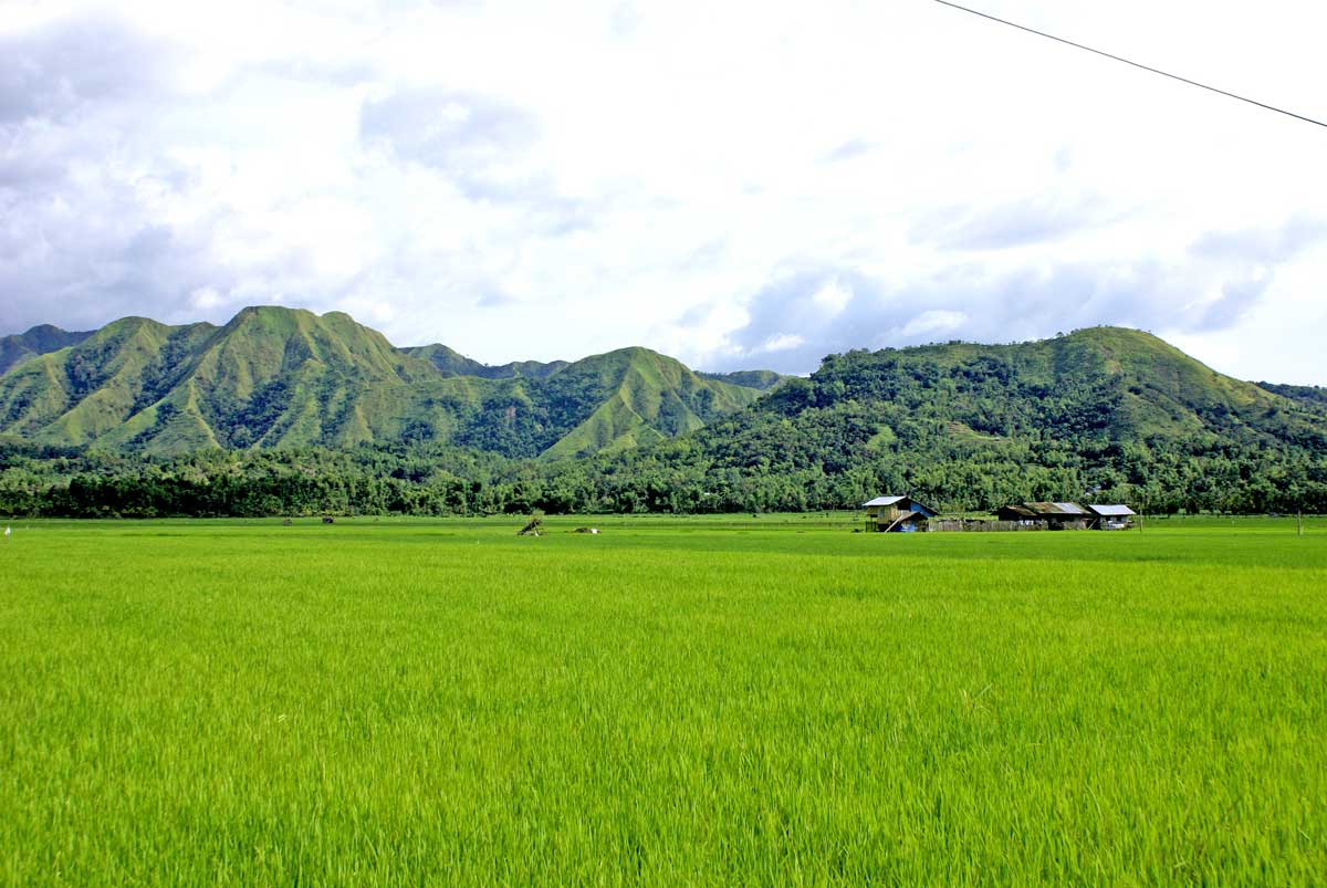 Spectacular ricefield and mountain panoramas