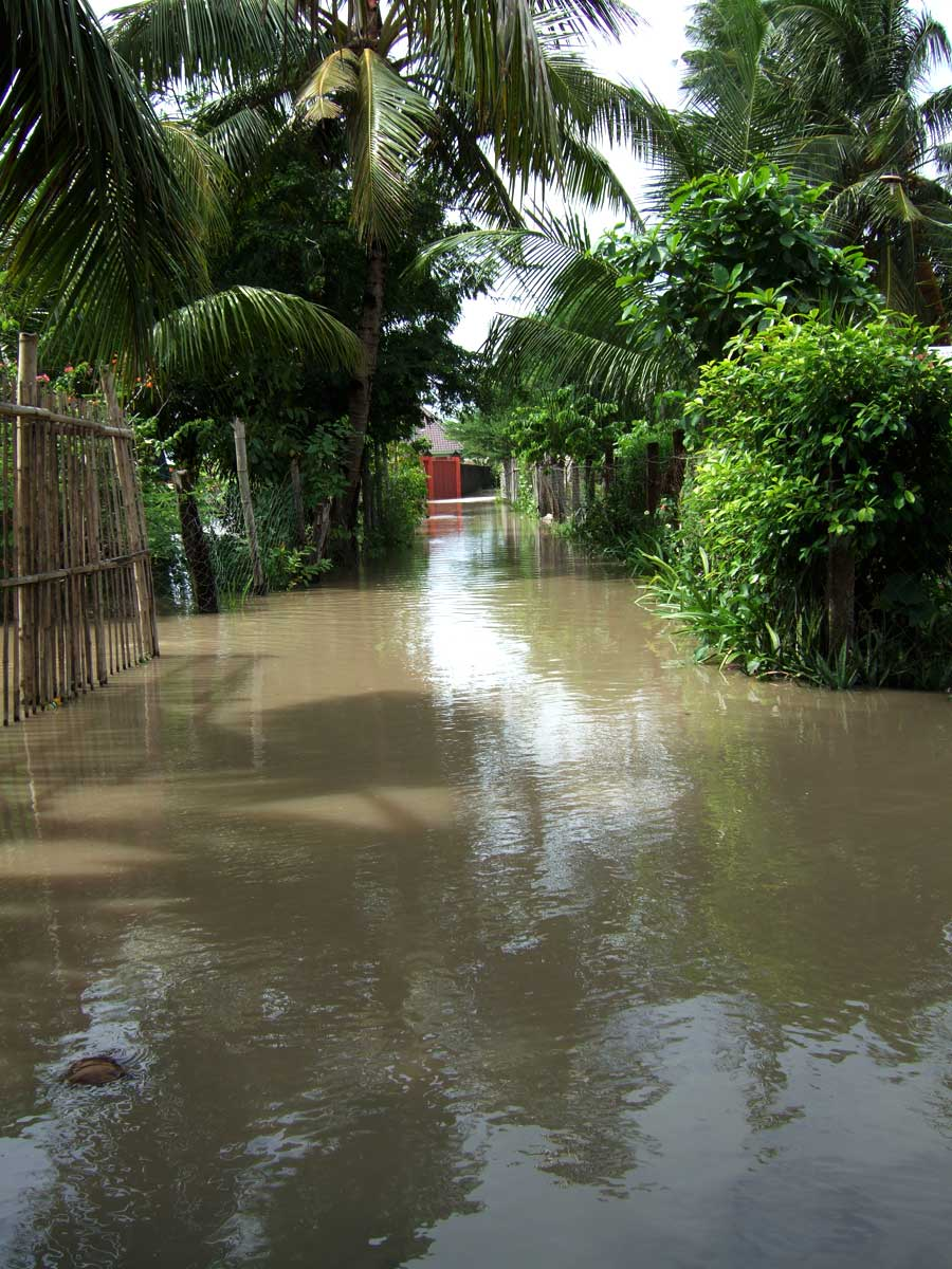 The road into a small Tigbauan, Iloilo subdivision after heavy rain.