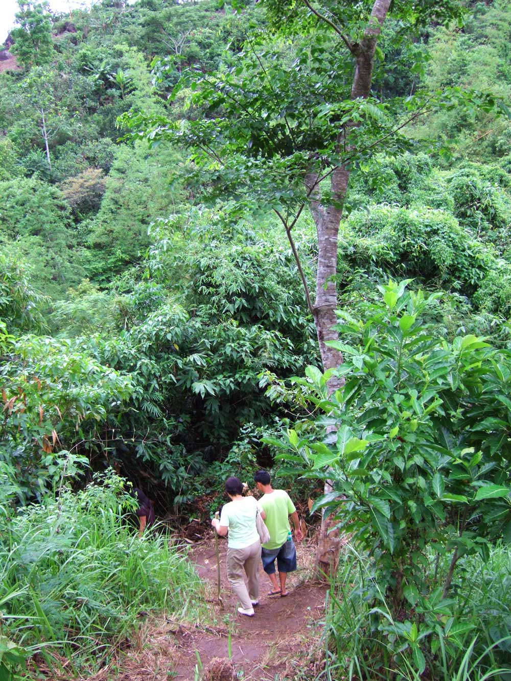 Hiking trail to the waterfalls Mumbukal Mountain Resort