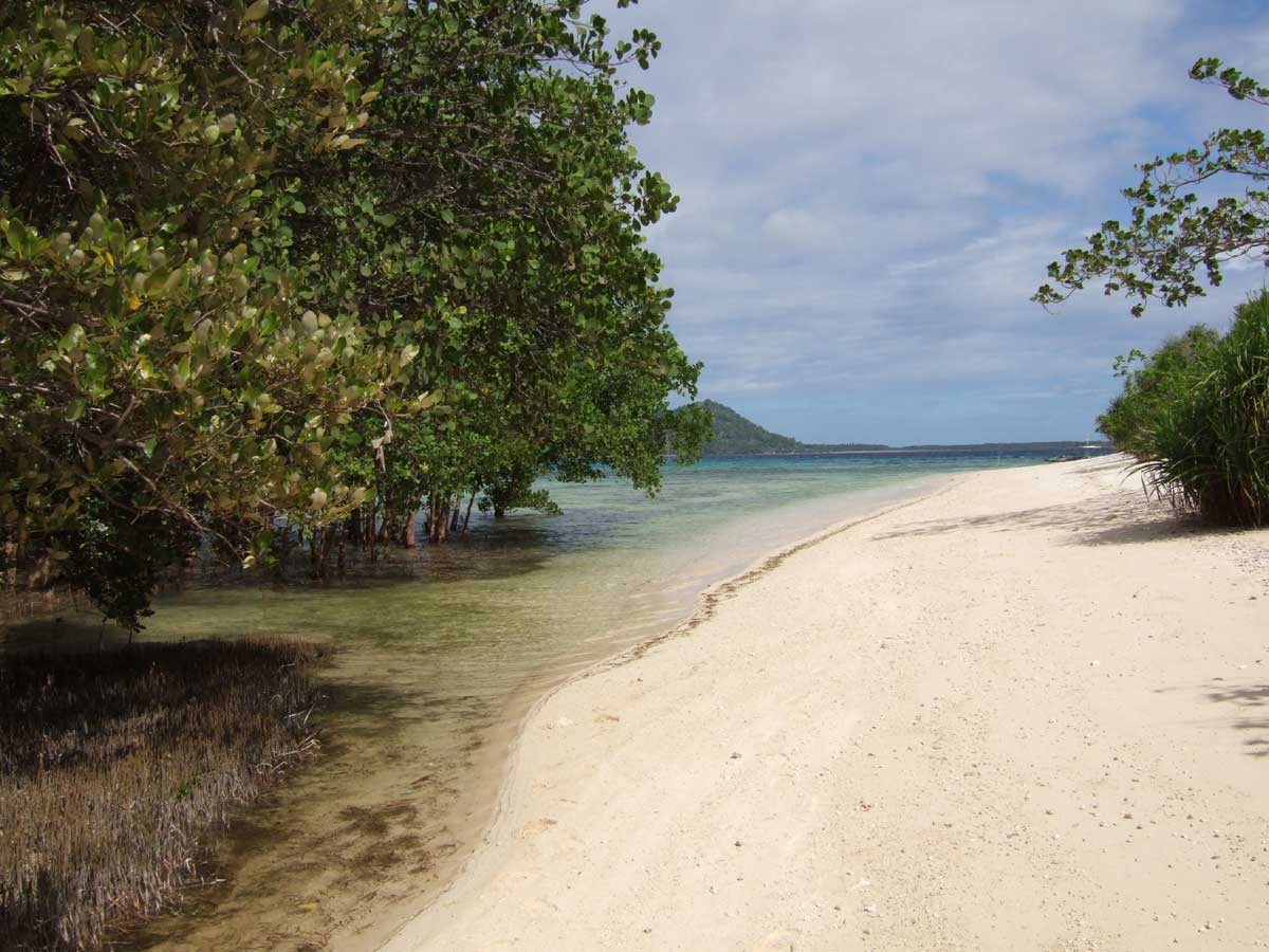 Antique Philippines  City pictures : ... sand beaches and flourishing Mangroves, Antique Province, Philippines