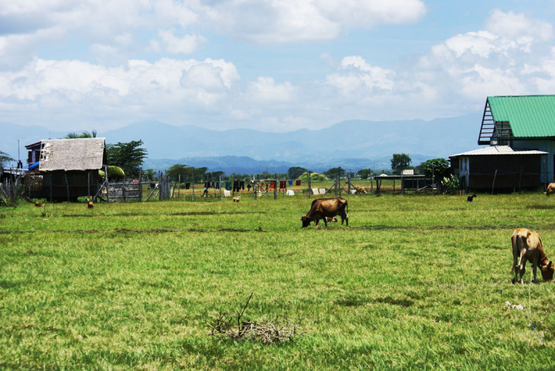 Pavia, Iloilo land for sale